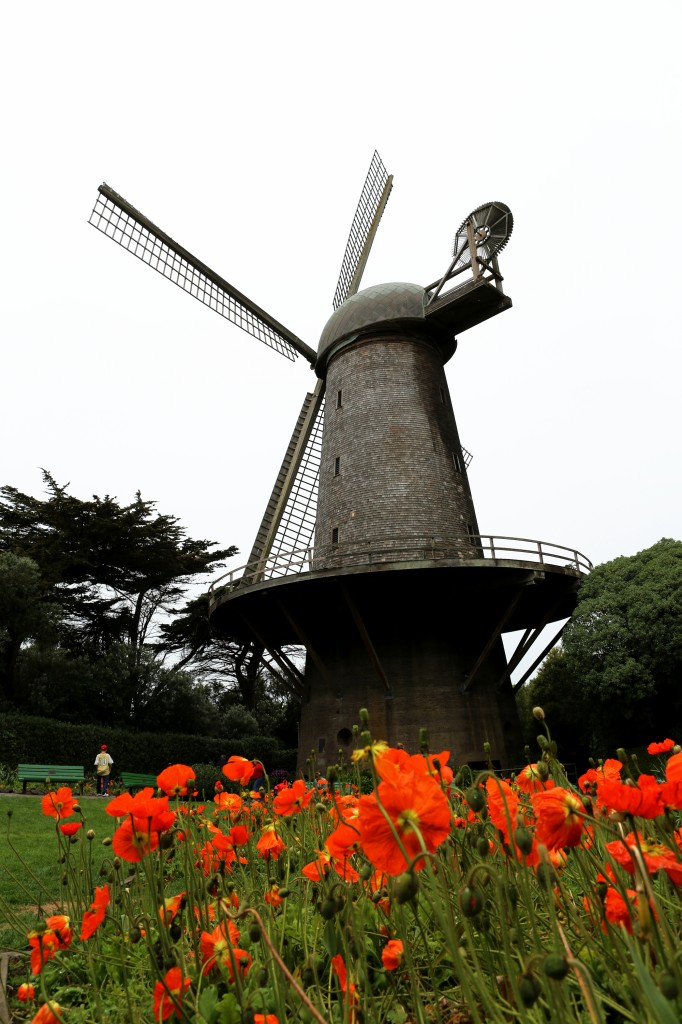 Queen Wilhelmina windmil in Golden Gate Park San Francisco