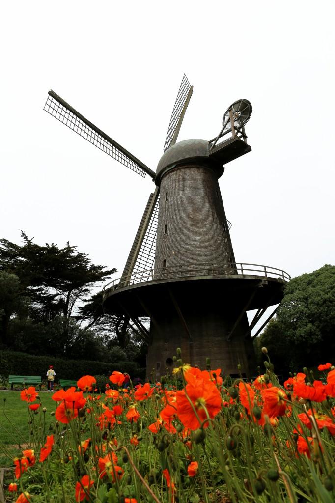 Queen Wilhelmina windmil in Golden Gate Park San Francisco